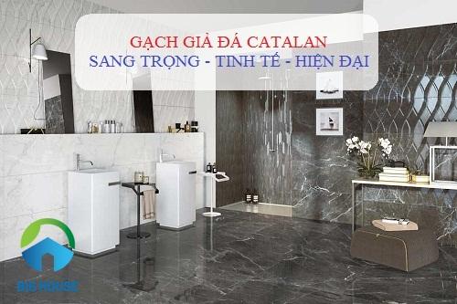 100++ Mẫu gạch giả đá Catalan bán chạy nhất 2020 tại Big House