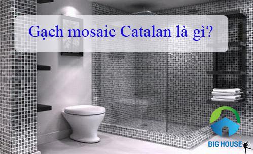 Gạch Mosaic Catalan là gì? Mẫu gạch Mosaic Catalan HOT nhất 2021