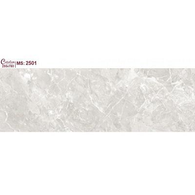 Gạch ốp tường Catalan Titan 255x780mm 2501