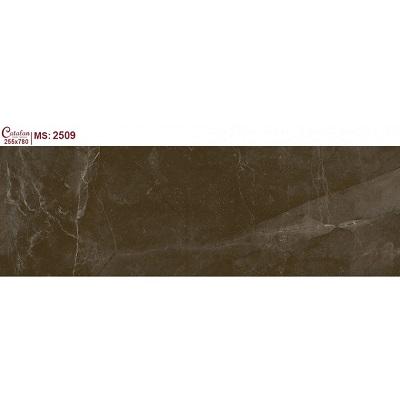 Gạch ốp tường Catalan Titan 255x780mm 2509