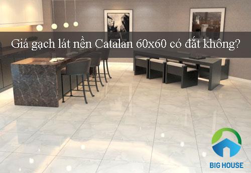 giá gạch lát nền Catalan 60x60 có đắt không