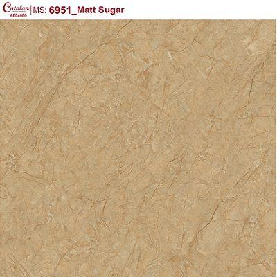 Gạch lát nền Catalan Titan 60×60 6951