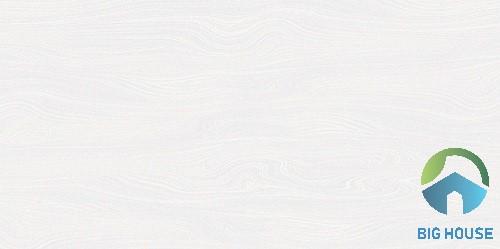 gạch ốp màu trắng 4