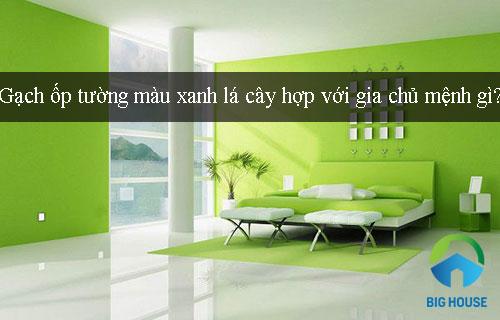 TƯ VẤN: Gạch ốp tường màu xanh lá cây hợp với gia chủ mệnh gì?