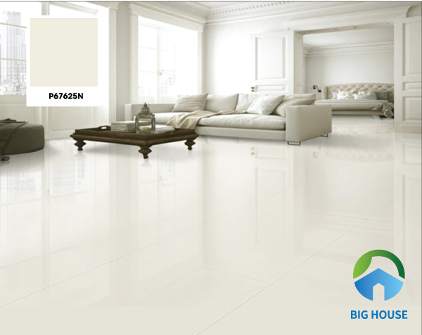 Mẫu gạch Taicera P67625N màu trắng trơn có kích thước 60x60. Tone màu sáng này được sử dụng rất phổ biến, chưa bao giờ lỗi mốt. Dù không gian nhà bạn mang phong cách nội thất nào thì đều dễ dàng kết hợp với mẫu gạch lát nền này