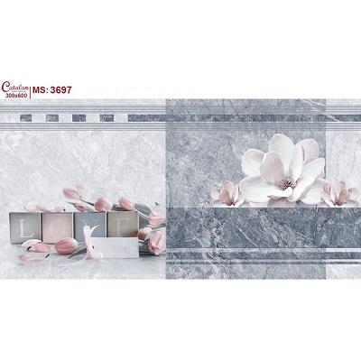 Gạch ốp tường Catalan 30x60cm 3697