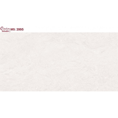 Gạch ốp tường Catalan 30x60cm 3995