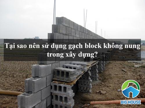 ƯU ĐIỂM vượt trội khi sử dụng gạch block không nung trong xây dựng?