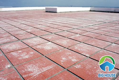 Gạch cotto chống nóng