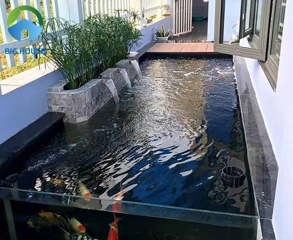 Gạch ốp hồ cá có nên sử dụng hay không? Cùng giải đáp!